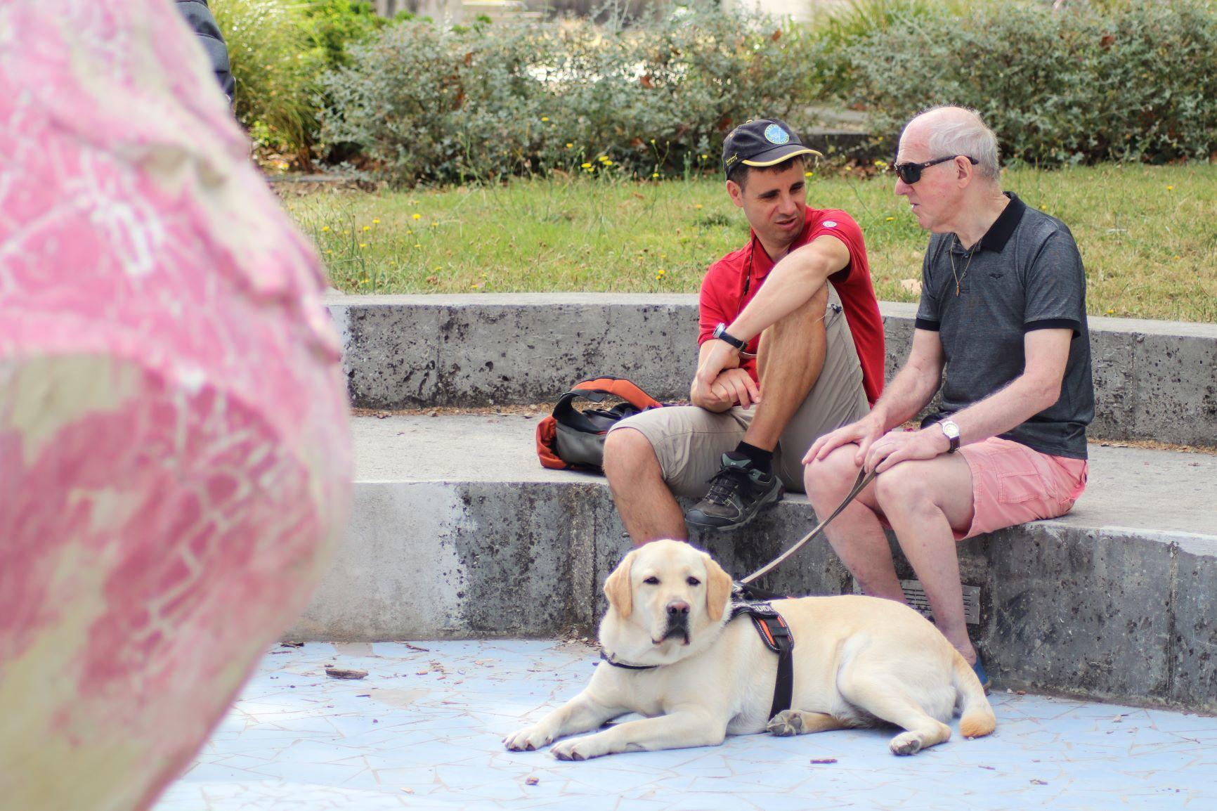 Accompagnement et financement de chien guide
