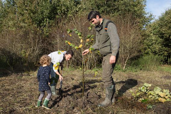 Nederland 65.731 bomen rijker door EO-actie 'Nederland plant bomen'
