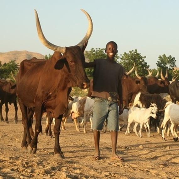 Charles au Mozambique